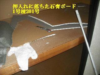 震災後の仕事_f0031037_20411317.jpg
