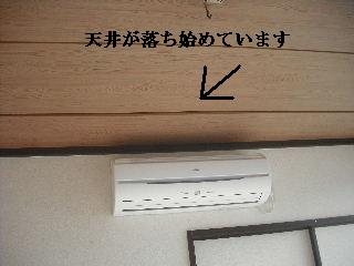 震災後の仕事_f0031037_20423128.jpg