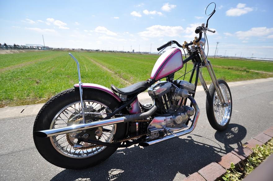 DEAD HEAT MIKAWA 8_f0133871_15153850.jpg