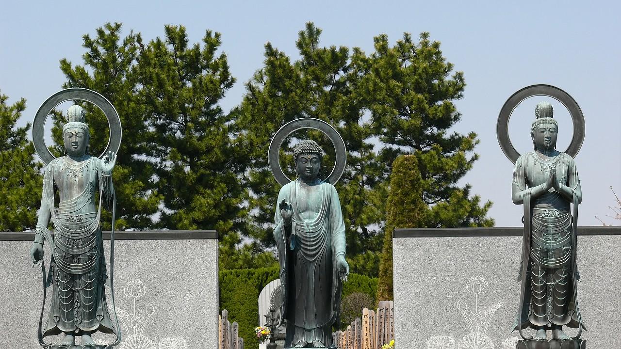 【 日記 3/29 】 満開!安行桜_a0185081_18271538.jpg