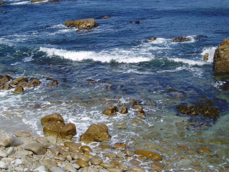 海を汚してスミマセン_c0025115_1936510.jpg
