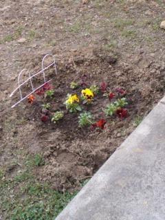 「園芸」やった_d0165645_12451862.jpg