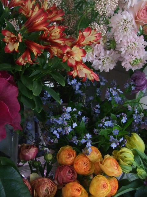 オークリーフ(白木蓮と黒いカラーの花)_f0049672_14434345.jpg