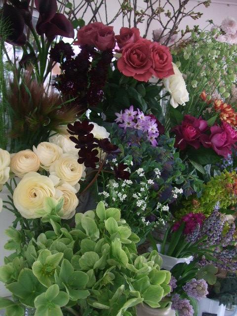 オークリーフ(白木蓮と黒いカラーの花)_f0049672_14495859.jpg