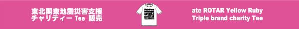 チャリティーTシャツのお知らせ_c0223486_172826.jpg