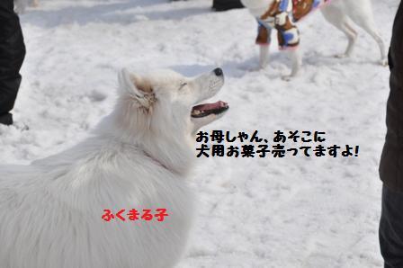 f0212597_13355035.jpg