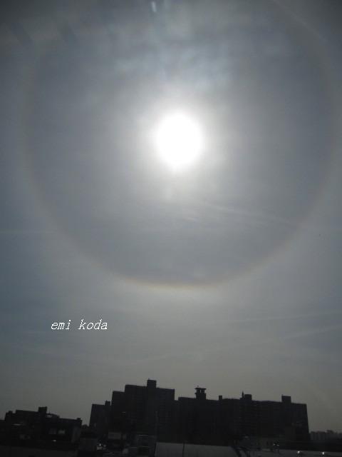 NYの日輪_f0095325_11485840.jpg