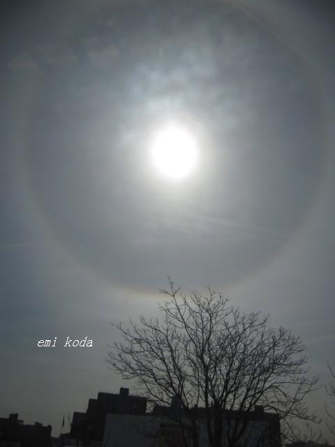 NYの日輪_f0095325_11492483.jpg