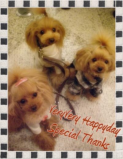 HappyDay_b0084929_19434661.jpg