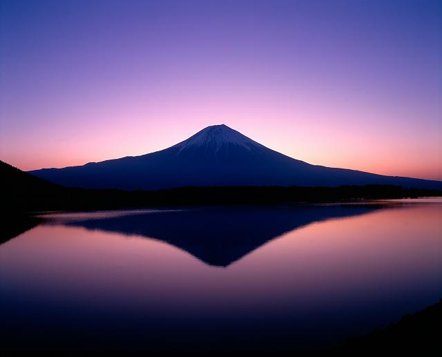 東日本大震災 チャリティープリント販売_f0050534_18353391.jpg