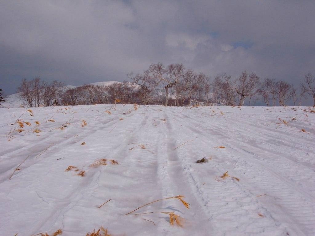 3月31日、フレ岳-その1-_f0138096_16553564.jpg