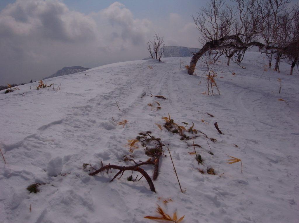 3月31日、フレ岳-その1-_f0138096_1655767.jpg