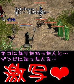 f0072010_2304612.jpg
