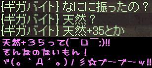f0072010_2482725.jpg
