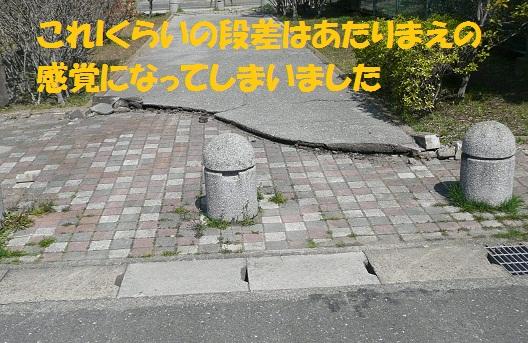 f0121712_23103071.jpg