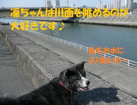 f0121712_23392954.jpg