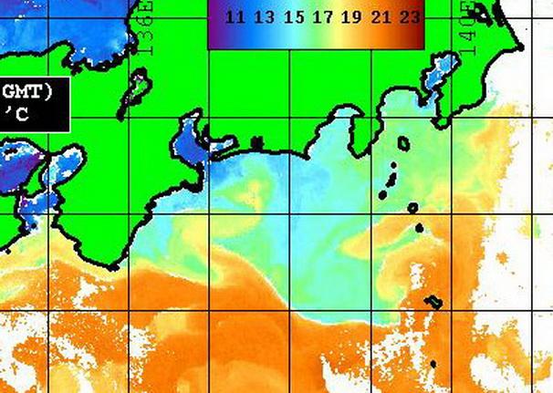 熊野灘から志摩沖に入った潮は・・・ 【カジキ・マグロトローリング】_f0009039_15271696.jpg