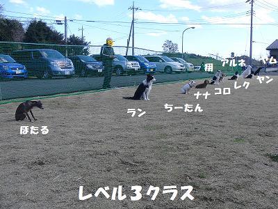 f0186040_050521.jpg