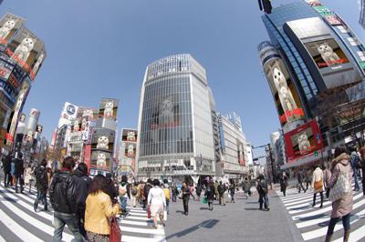 ヨウカンさん渋谷ジャック!_a0028451_2152186.jpg