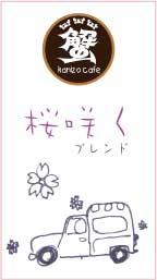 桜サク!_a0044064_20485899.jpg