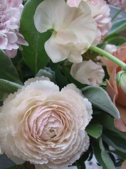 オークリーフ(シュナーベルと微妙なピンク色の花たち)_f0049672_17231224.jpg
