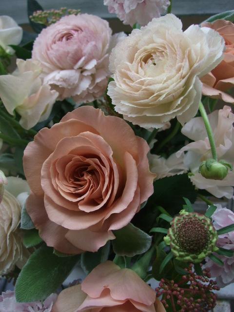 オークリーフ(シュナーベルと微妙なピンク色の花たち)_f0049672_1723490.jpg