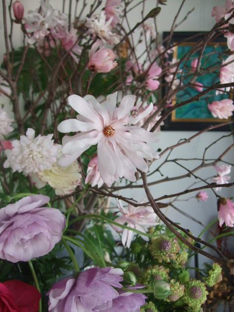 オークリーフ(淡いピンクのシデコブシのある風景)_f0049672_18193413.jpg
