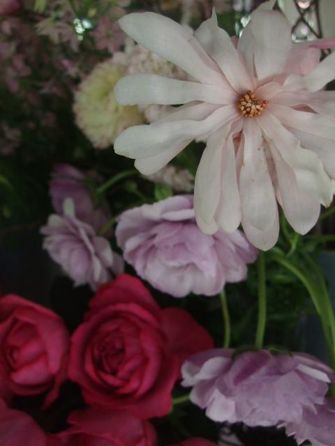 オークリーフ(淡いピンクのシデコブシのある風景)_f0049672_18195280.jpg