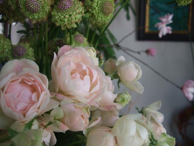 オークリーフ(淡いピンクのシデコブシのある風景)_f0049672_1863942.jpg