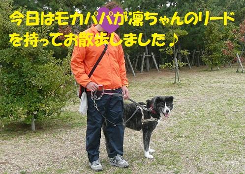 f0121712_23372714.jpg