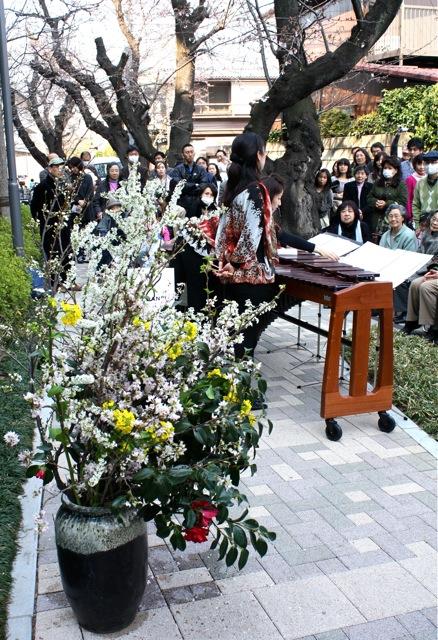 桜の木の下で  涙…。_f0170519_17373543.jpg