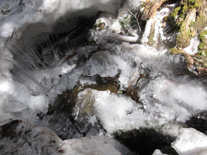 2010年4月26日の写真ー氷_e0155231_18233349.jpg