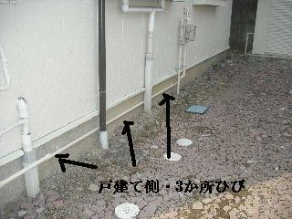 f0031037_21291.jpg