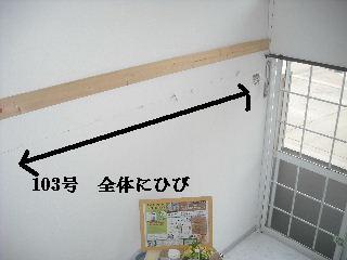f0031037_2142746.jpg