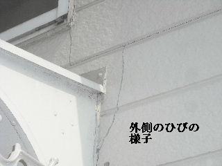 f0031037_216174.jpg