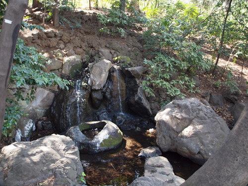 杉並区の水源_e0232277_10582115.jpg