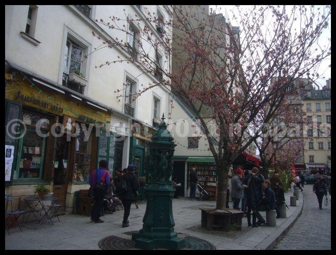 【サクラSAKURA】3月31日ノートルダム界隈(PARIS)_a0008105_23321199.jpg