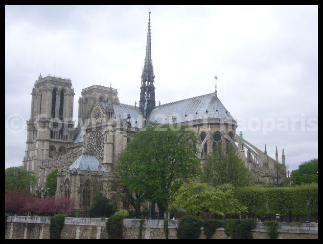 【サクラSAKURA】3月31日ノートルダム界隈(PARIS)_a0008105_23332995.jpg