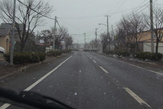 2011年4月3日(日):舞う雪_e0062415_17261591.jpg