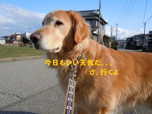 f0114128_18283944.jpg