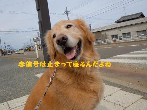 f0114128_1843479.jpg