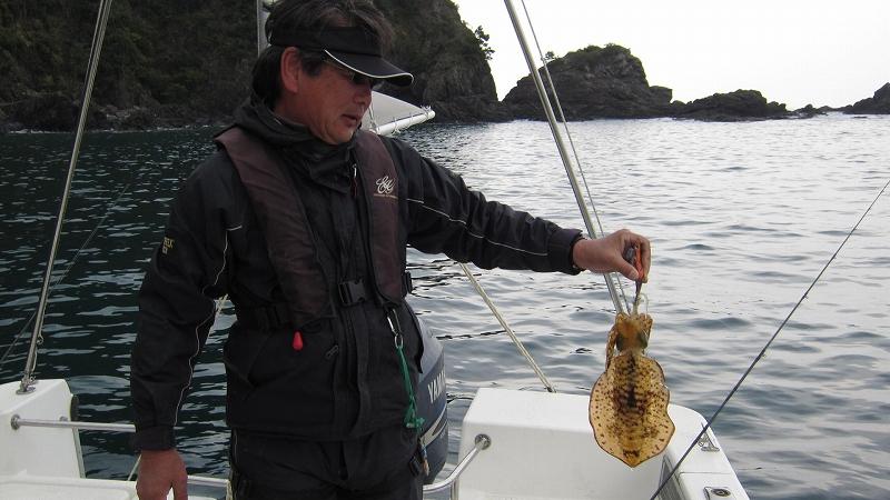 週末の釣果  アオリイカ・メジロ_a0132631_19231581.jpg