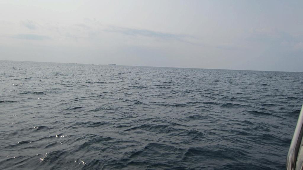週末の釣果  アオリイカ・メジロ_a0132631_19581699.jpg