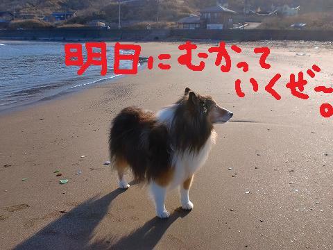 a0114853_1846514.jpg