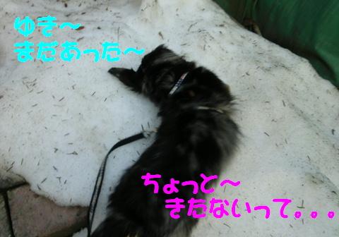 季節の変わり目_f0195891_20131333.jpg