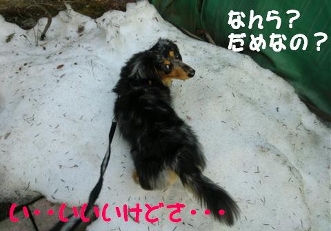 季節の変わり目_f0195891_20133948.jpg