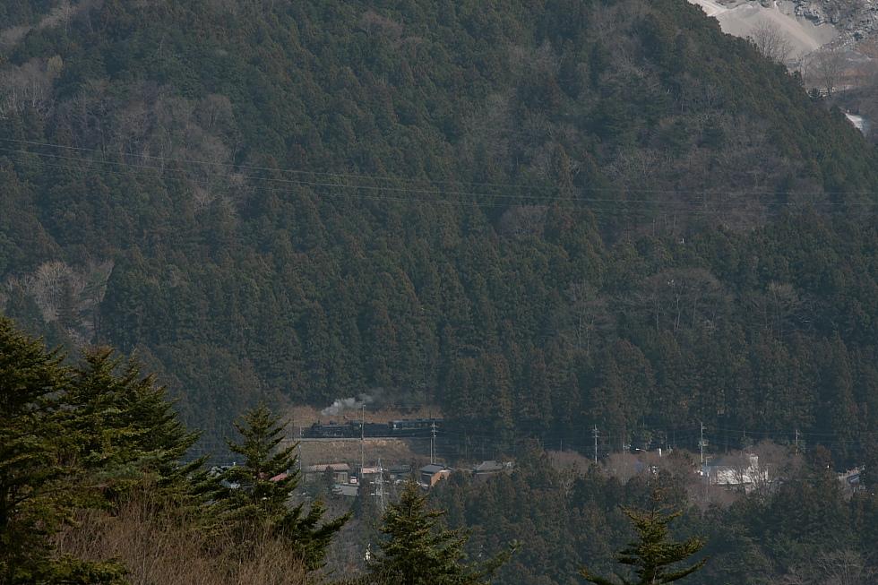花粉色の杉林 - 2011年・秩父 -_b0190710_23483161.jpg