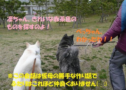 f0121712_8494577.jpg