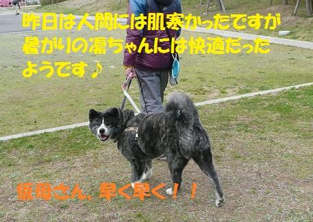 f0121712_8503730.jpg