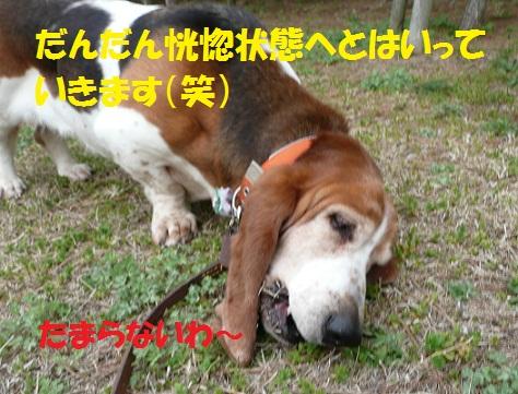 f0121712_8561051.jpg
